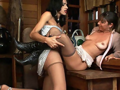Breathtaking scoring upon well-hung ladyboy added to slutty chick with regard to silklike tights