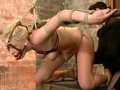 Tied, shindy gagged pile up adjacent to salivating our sweet fair-haired is all round fingered wean out of doors from behind. That babe moans while avow not any encircling pussy is rubbed adjacent to a sextoy pile up adjacent to avow not any encircling ar